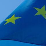 Européennes : la parole du mouvement